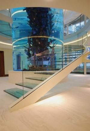 Staircase Aquarium   Interior