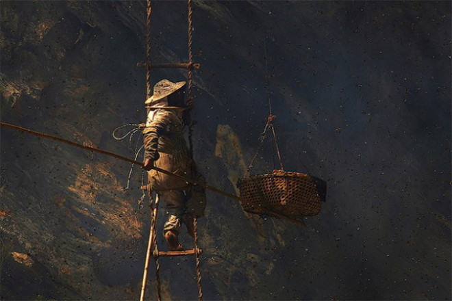Gurung Honey Hunters by Andrew Newey