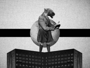 Illustrations by Rafael Castilho Monteiro