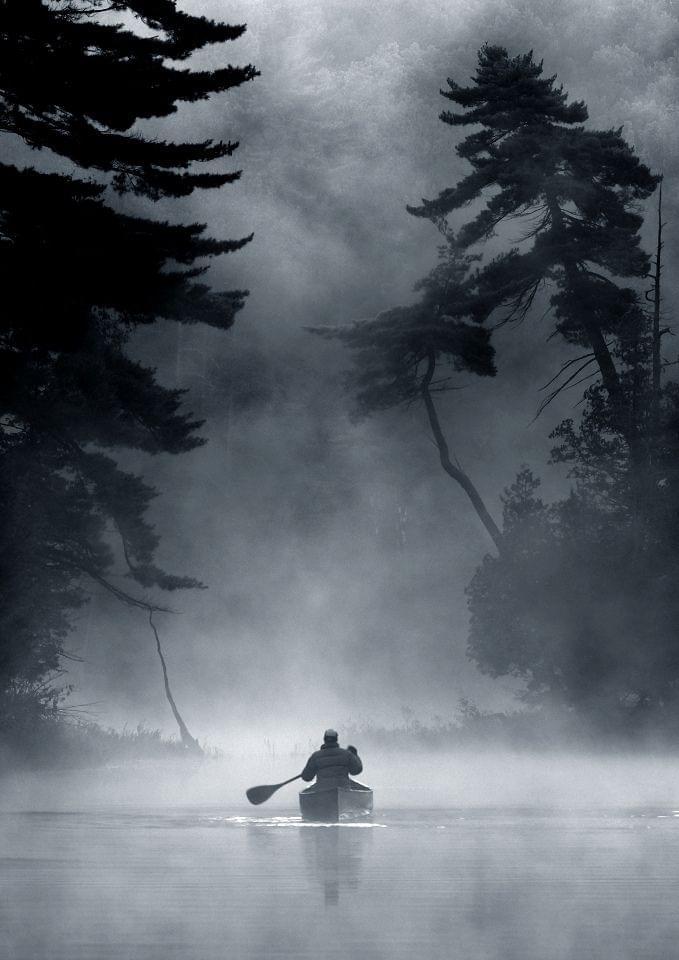 Black and White Fog