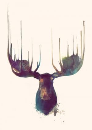 Moose Art Print by Amy Hamilton