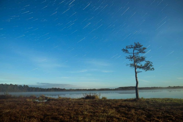 Photography by Arseni Kukk
