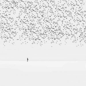 Surreal Photography by Hossein Zare