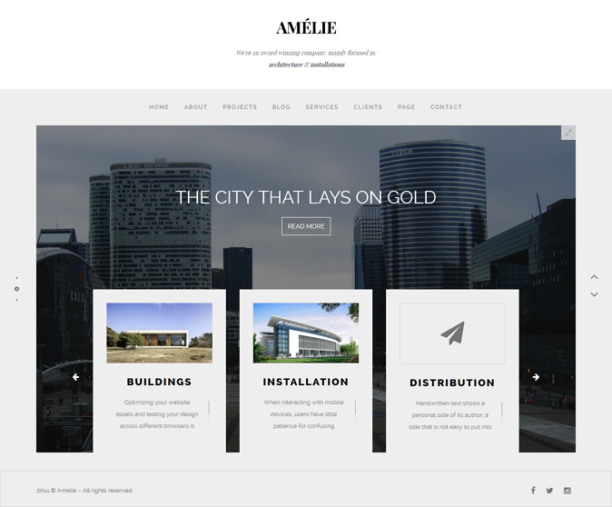 Amelie WP Theme for Creatives & Photographers Build on a clean design, and in a good thought ...