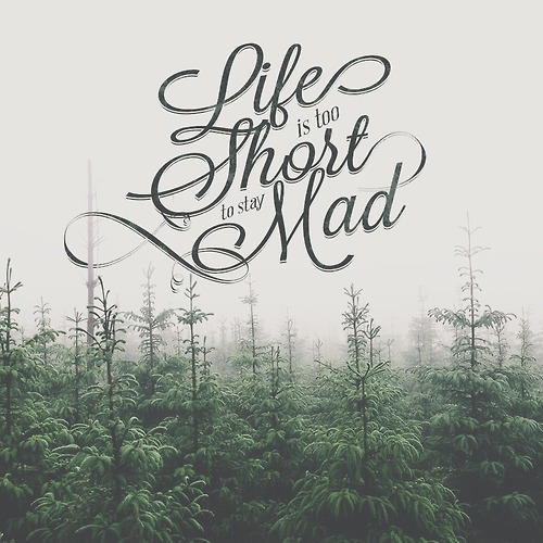 Life is too Short to say Mad