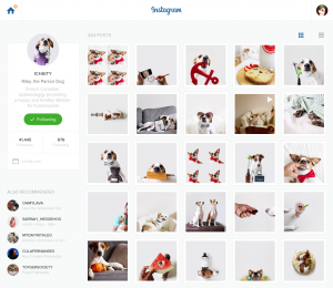 Instagram Redesign by Pavel Knyazev