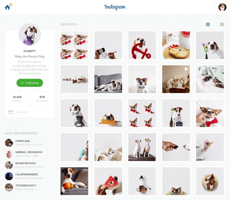 Instagram Redesign by Pavel Knyazev
