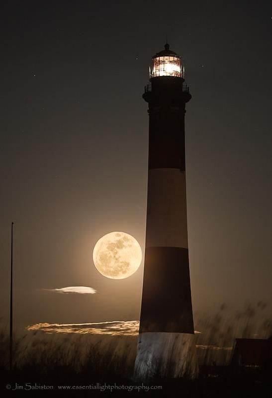Pin by Elaine Hammer on Moon Shadow   Pinterest