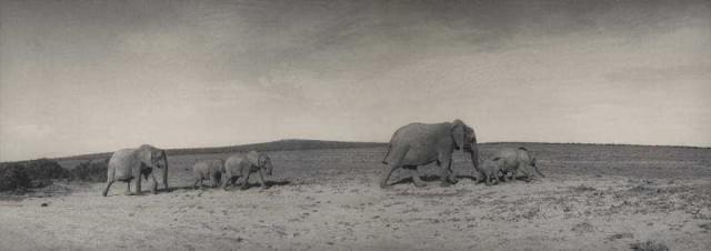 Vintage Photography by Silke Lauffs | Fine Art Photography