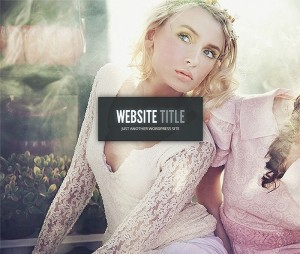 Gleam – 50 WordPress Themes for Fashion Blogs