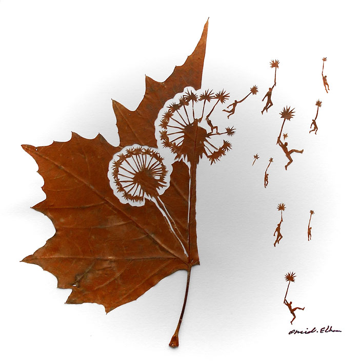 Delicate Leaf Cuttings By Omid Asadi