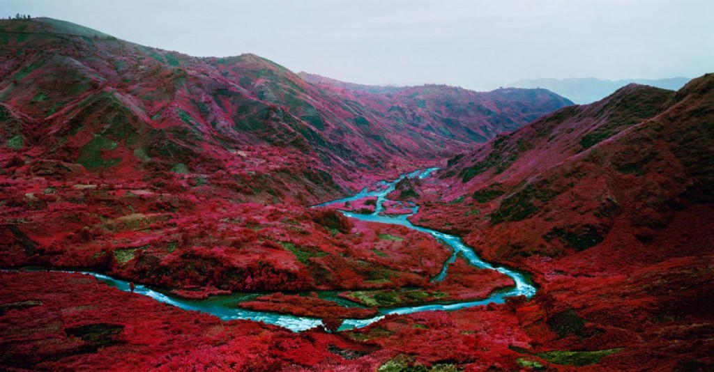 Fine Art Landscapes by Richard Mosse