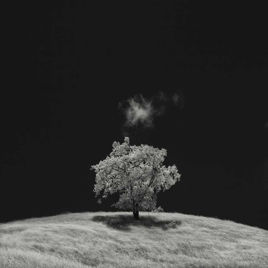 Infrared Silence by Nathan Wirth