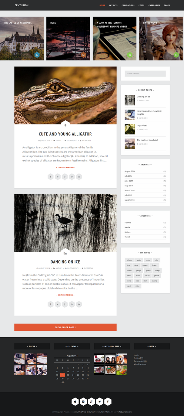 Centurion is a professional, fast loading, super-customizable WordPress blog\portfolio theme.  M ...