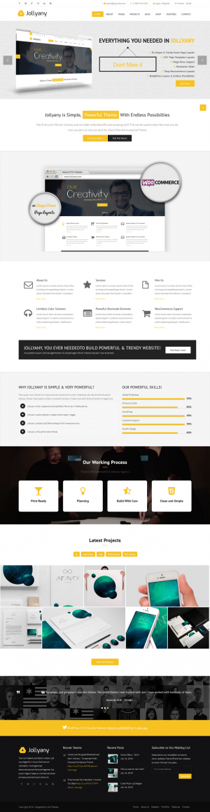 Jollyany Multipurpose WordPress theme is packed with infinite features and functionalists like c ...