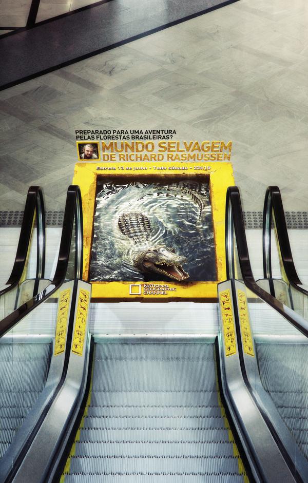 Nat Geo – Mundo Selvagem by Miagui Imagevertising