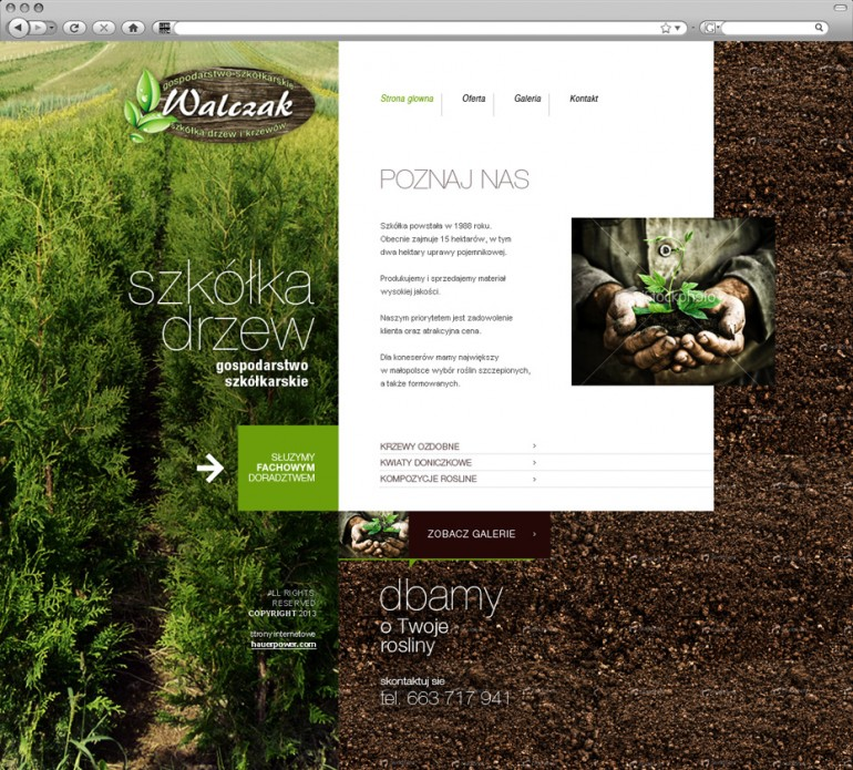 Walczak Tree – gardening