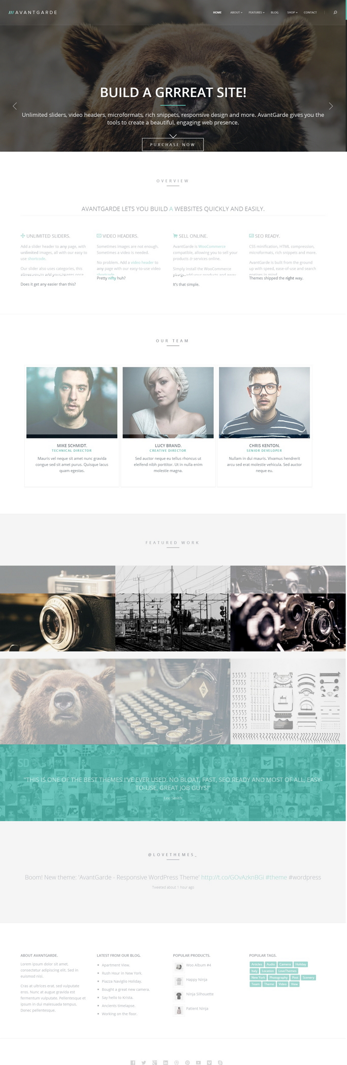 AvantGarde theme for WordPress is an innovative, multipurpose WooCommerce compatible theme, allo ...
