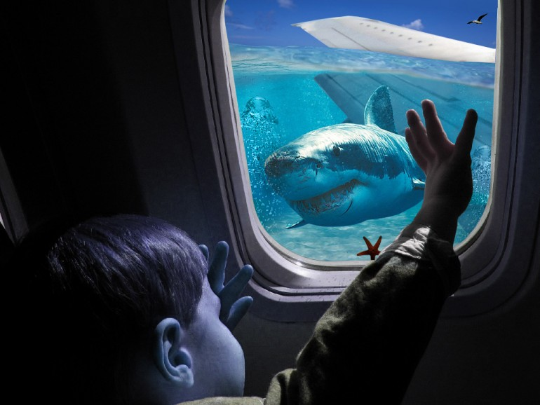 This airplane crashes in the big blue ocean.
