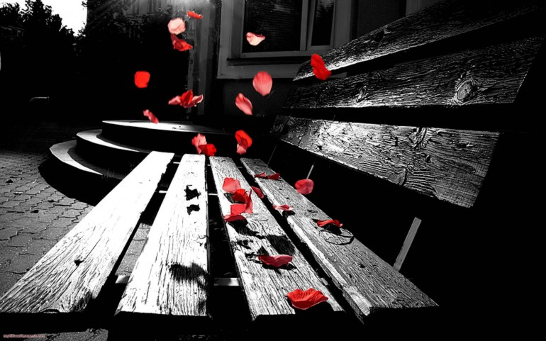 Romantic Color Splash – Photography Wallpapers