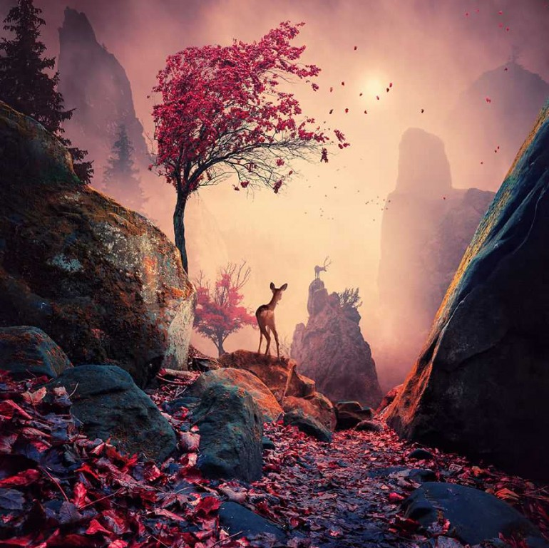 Fine Art Photography by Caras Ionut