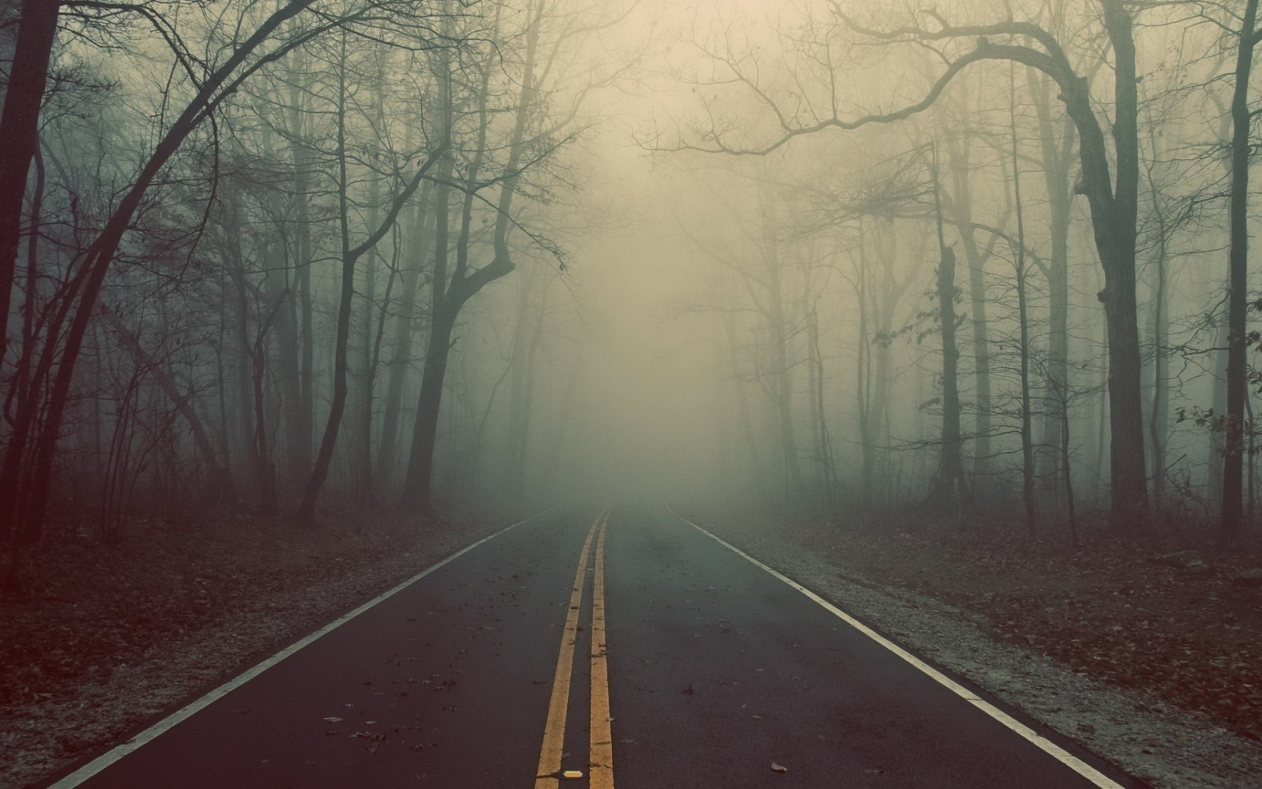 Foggy Road Landscape – Photography Wallpapers