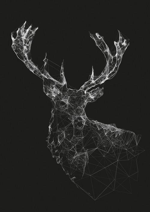 Elk by Jeff Hansen