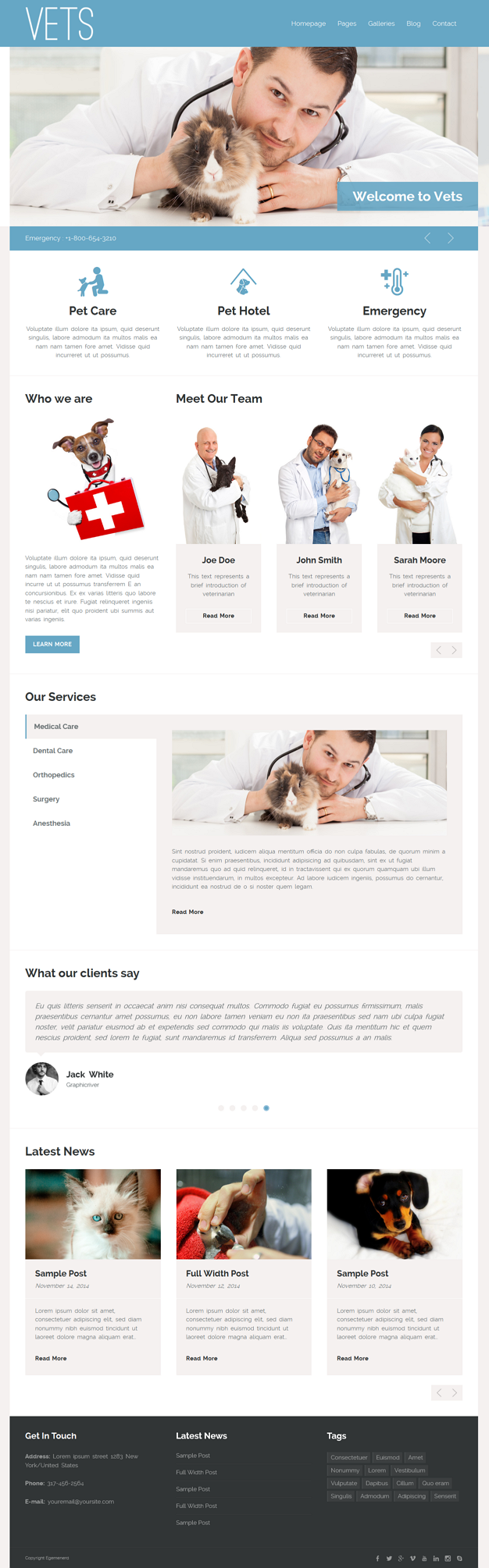 VETS is responsive WordPress theme for veterinary, health and medical websites.