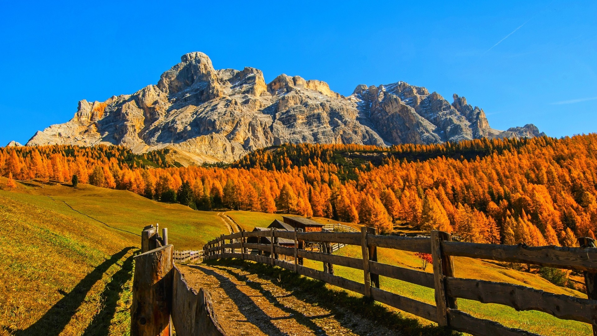 Beautiful Autumn Forest Mountain – Photography Wallpapers