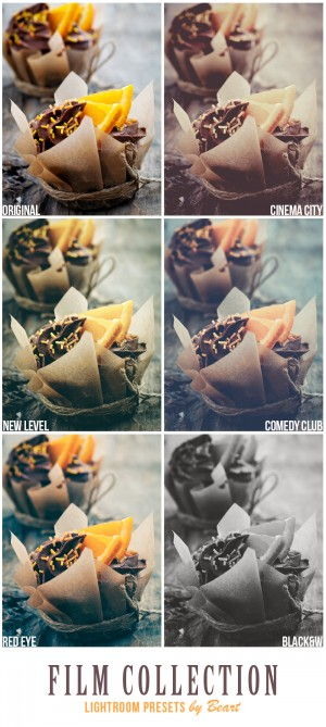 Film Looks ACR and Lightroom Presets Collection by BeArt Lightroom Presets | Photography