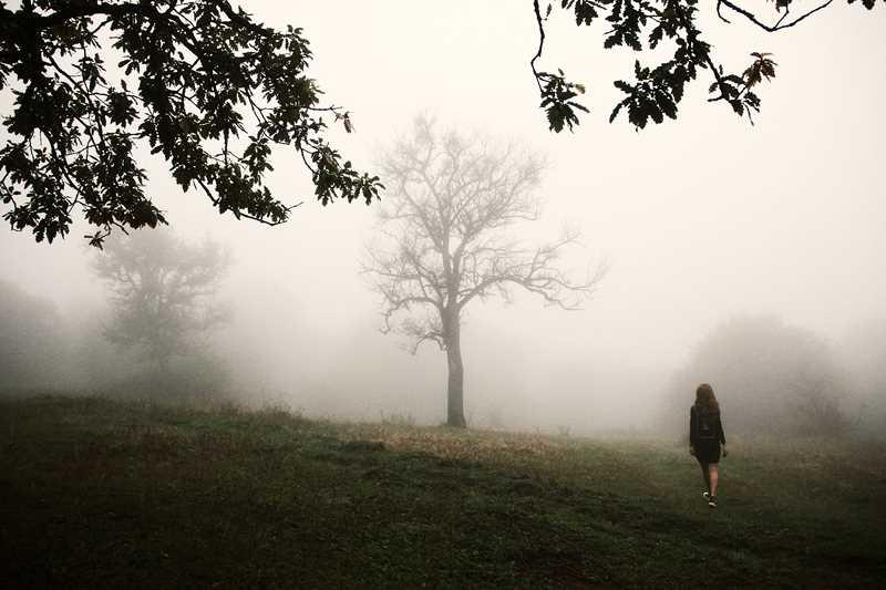 Photography by Zura Shamatava