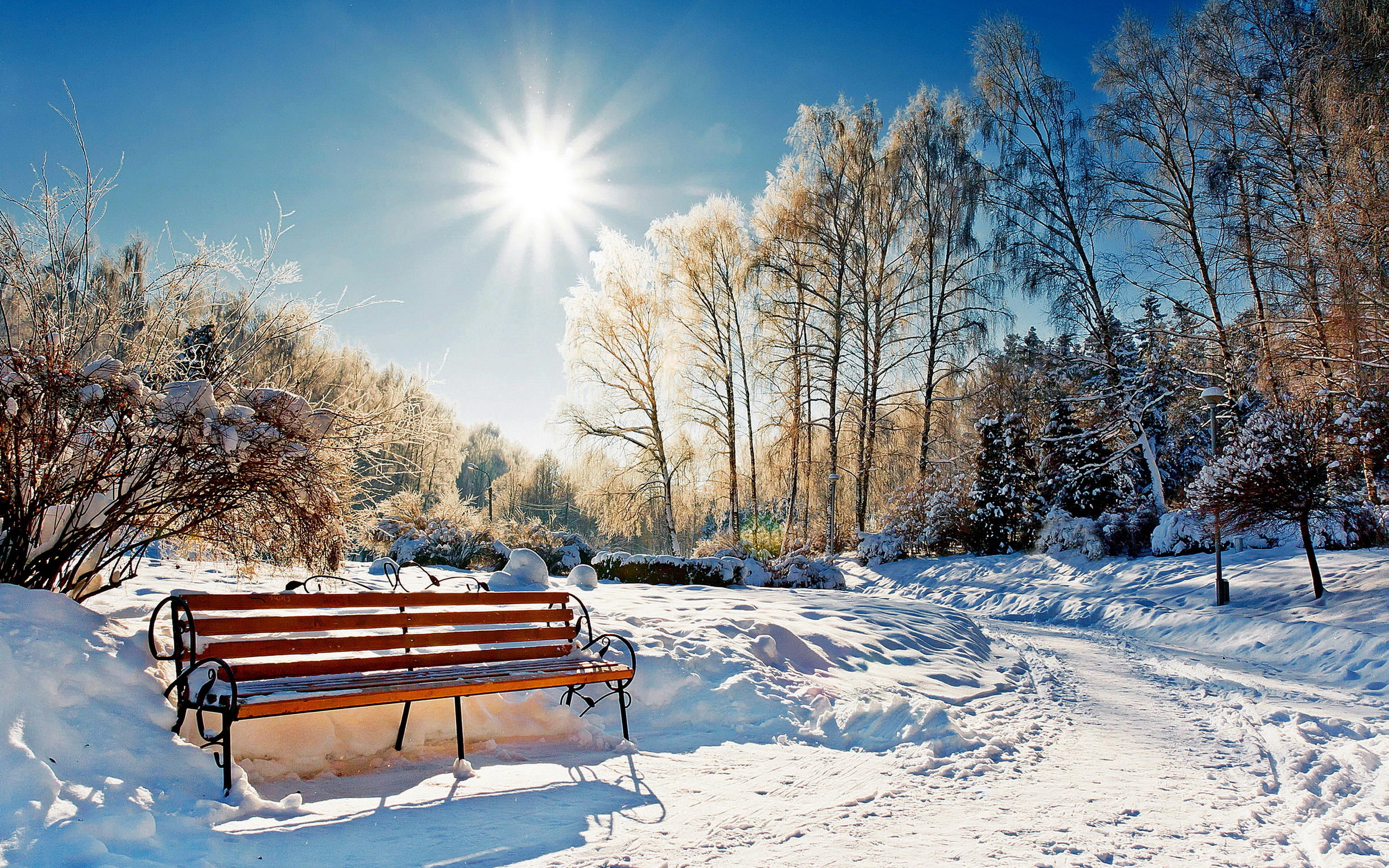 Winter Park Sunset Bench Snow Sun – Photography Wallpapers