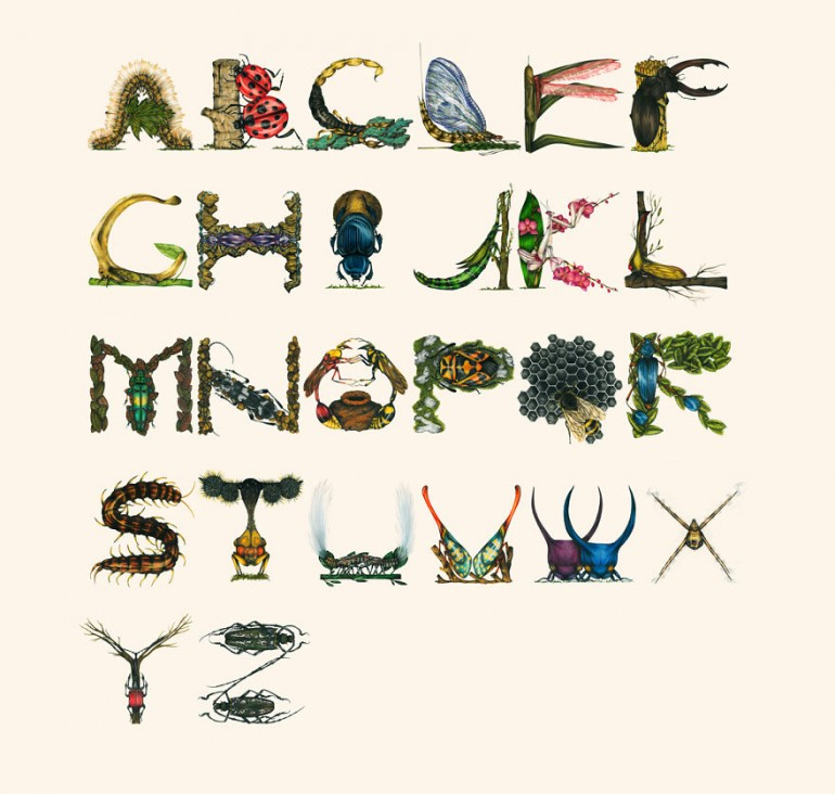 Insects Alphabets
