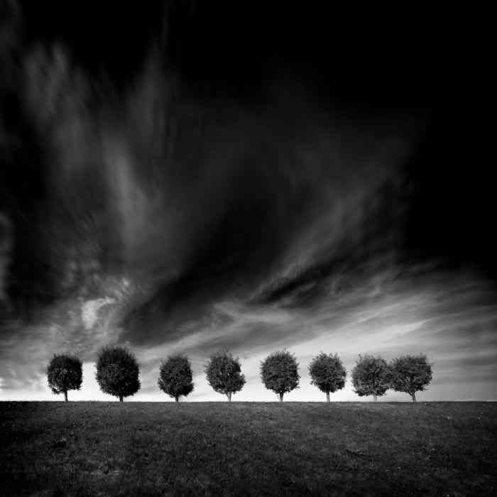 Black and White Landscapes by Alexey Antonov