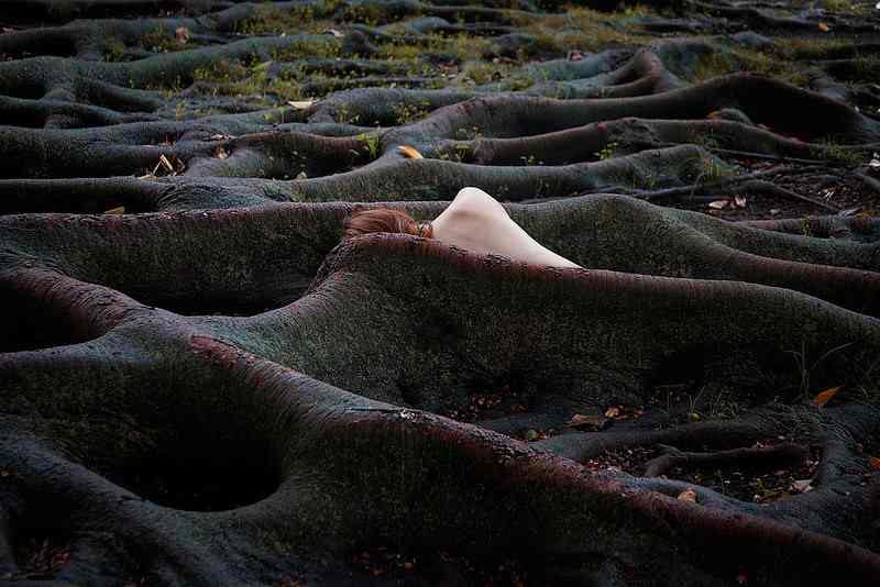 Fine Art Photography by Elena del Palacio