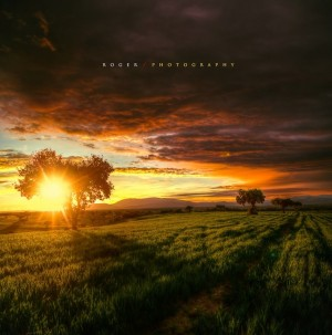 Wonderful Landscape Photography   Downgraf