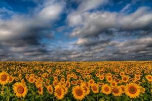 Landscape Photography by Achim Thomae