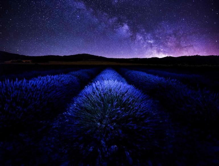 Nature Photography by David Bouscarle