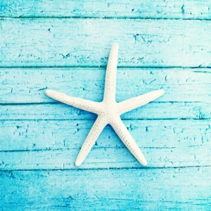 Beach Photography starfish aqua blue white by CarolynCochrane