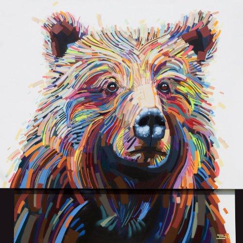 Bear by Justin Kane Elder