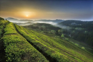 Amazing Landscapes by Keehwan Kim | Landscape Photography