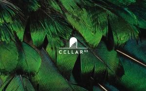 CELLAR63 we