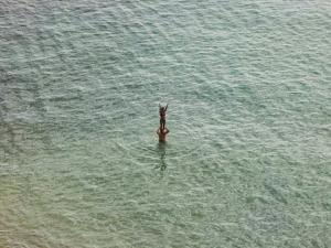 On The Beach 2.0 by Richard Misrach | Landscape Photography