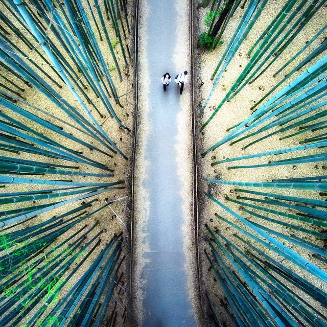 Drone Photography by Daniel Peckham