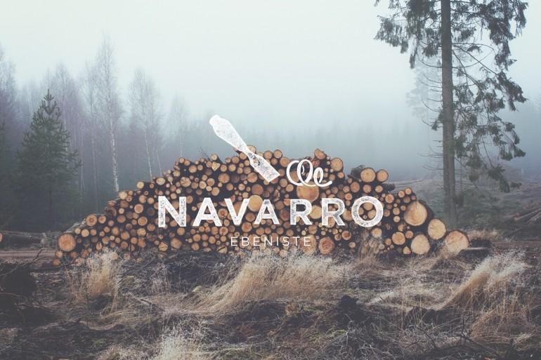 Navarro identity