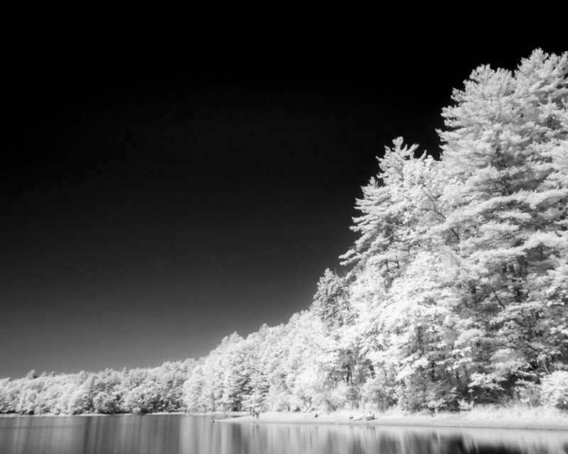 Infrared Photography by Rob DePaolo