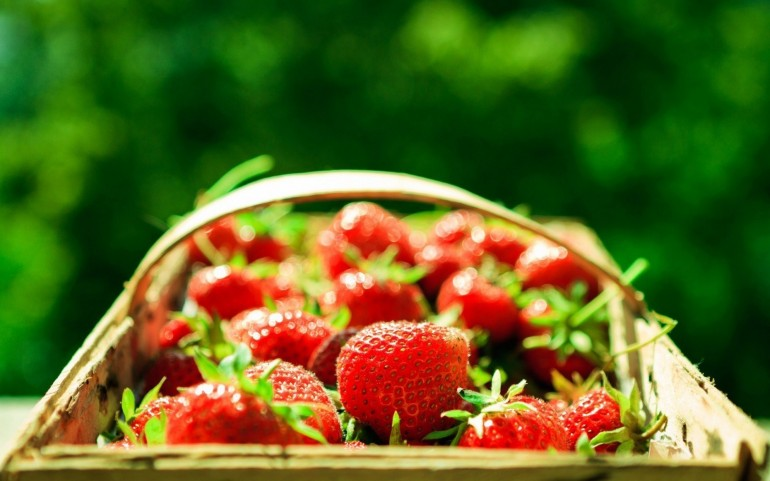 Strawberries Bokeh – Photography Wallpapers
