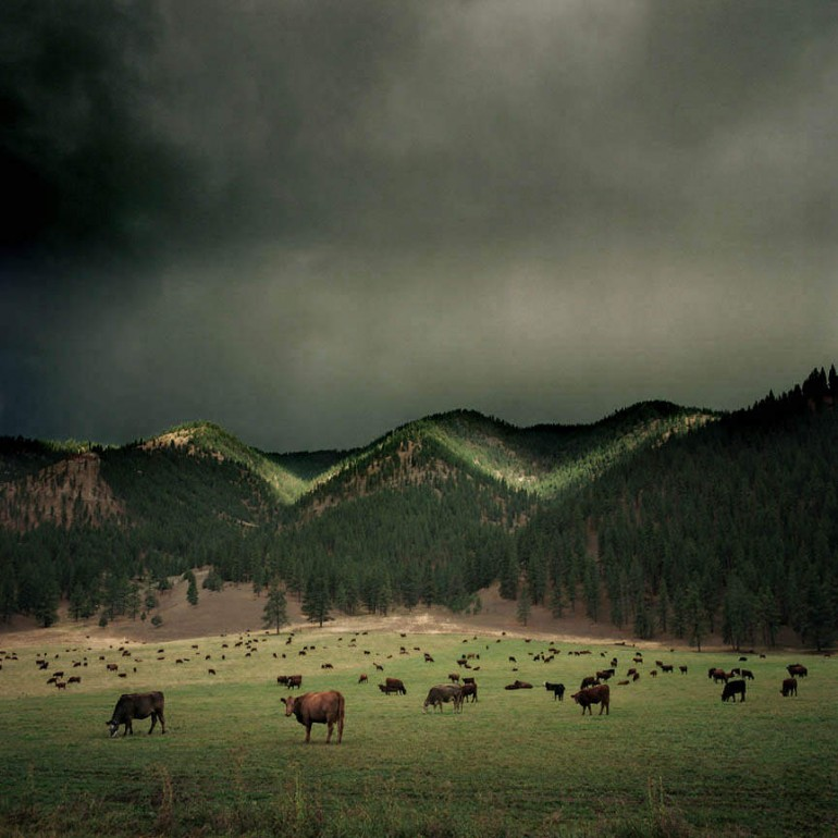 Vintage American Landscapes by Michael Eastman