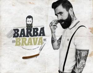 Logo / Branding draft for Barba Brava