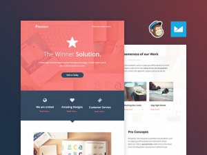 Passion : Free Responsive Email Template (PSD and HTML)